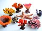 Изображение в Рыбки (Аквариумистика) Изготовление аквариумов Marvel-water decor – это комплекс композитных в Балаково 0