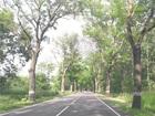 Увидеть foto Земельные участки Продается земельный участок 8 соток в г, Балтийск 68210772 в Балтийске