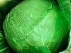 Просмотреть фото Разное Картофель и овощи от производителя, УРОЖАЙ 2016г, ! 36657973 в Барнауле