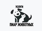 Смотреть фото Услуги для животных Помощь в продаже щенков и котят, Пиар животных, 67657024 в Санкт-Петербурге