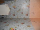 Смотреть foto  сдам комнату в 3-комнатной квартире по ул, Королева 60488735 в Белгороде