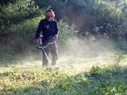 Просмотреть foto  Покос травы, благоустройство участков, дачные работы 67748065 в Белгороде