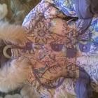Верхняя одежда д/девочек