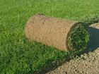 Уникальное изображение Ландшафтный дизайн Рулонный газон в Челябинске 53806213 в Челябинске