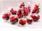 Новое изображение Другие предметы интерьера Живые цветы в вакууме (в стекле), 53941207 в Челябинске