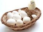 Смотреть foto  Яйцо домашнее куриное с частого подворья 66550840 в Челябинске