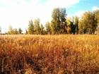 Уникальное фото Земельные участки Продаю земельный участок в посёлке Лазурный! 68357302 в Челябинске