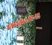 Фотография в Электрика Электрика (услуги) Дмитровские мастера выполнят работы по ЭЛЕКТРИКЕ. в Дмитрове 0