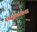 Фото в Электрика Электрика (услуги) ЭЛЕКТРОМОНТАЖНЫЕ РАБОТЫ. Недорого, качественно в Дмитрове 300