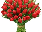Изображение в   Тюльпаны в Химках! ТЮЛЬПАНЫ на 8 марта от в Долгопрудном 28