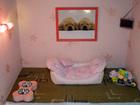 Изображение в Домашние животные Услуги для животных Гостиница для собак в Москве с видеонаблюдением. в Егорьевске 500