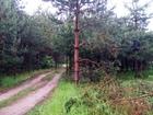 Фото в   Продается земельный участок 6 соток в СНТ. в Егорьевске 300000
