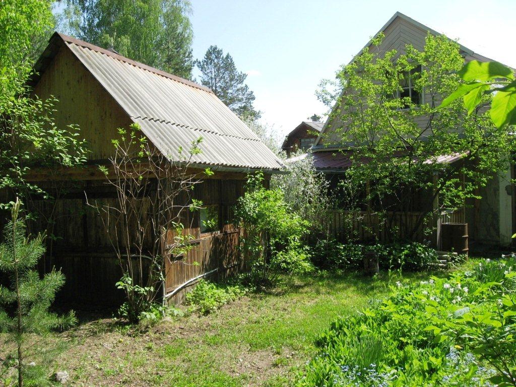 ласточки имеет сад на широкой речке екатеринбург купить подбора ресторанов для