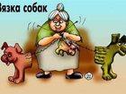 Фото в Собаки и щенки Продажа собак, щенков Профессиональные услуги инструктора по вязке, в Екатеринбурге 1500