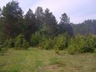 Смотреть фотографию  Земля 2,22 Га сельхозназначения в с, Курганово, 69677549 в Екатеринбурге