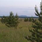Земли населенных пунктов 85 Га, ЛПХ, у озера Карагуз д, Знаменка