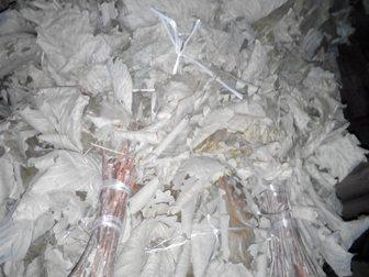 Просмотреть фото  Продам веники дубовые банные(добрые) 34277744 в Хабаровске