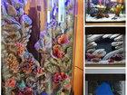 Фотография в   Задние объемные фоны для аквариума на заказ! в Омске 5000