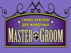 Фото в Собаки и щенки Стрижка собак Компания Зооград расширяет комплекс услуг в Ижевске 800