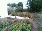 Скачать фото  Продаётся садоогород в СНТ Буровик, Завьяловском р-не 37498917 в Ижевске