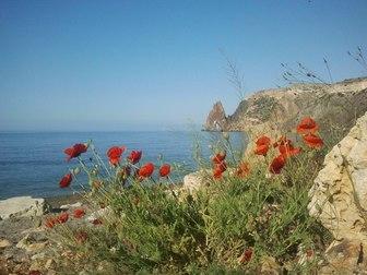 Скачать бесплатно изображение  Отдых на море 37356712 в Ижевске