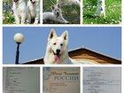 Фотки и картинки  смотреть в Якутске
