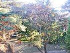Изображение в Недвижимость Агентства недвижимости Продам квартиру в Ялте, Загородная, 2 к. в Ялта 80000