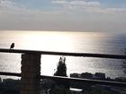 Скачать бесплатно фотографию Дома Продам дом в Ялте с панорамным видом на море, горы и город 39666988 в Ялта