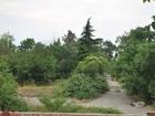 Земельный участок 1,3 га в Массандре под рекреацию, в аренде