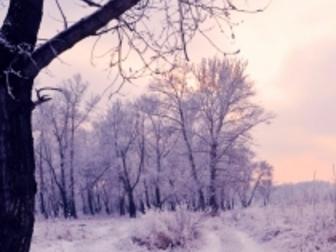 Новое фотографию Земельные участки Земельный участок в с, Устье на Волге, 6 сот, газ 32498602 в Ярославле