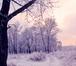 Фото в Недвижимость Земельные участки Продается земельный участок 6 соток на ул. в Ярославле 600000