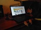 Скачать изображение Другие животные запущена акция «Приведи собаку на работу» 36600597 в Электростали