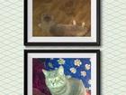 Фотография в Кошки и котята Вязка Предлагаем вязку с молодым котом порода Scottish в Йошкар-Оле 1000
