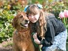 Просмотреть foto  Индивидуальная дрессировка собак в г, Набережные Челны, 39124711 в Набережных Челнах