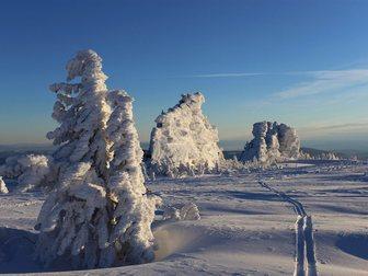 Новое фото  Новогодний фрирайдный тур в Шерегеш 34251056 в Кемерово