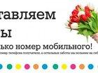 Изображение в Рыбки (Аквариумистика) Растения Доставка цветов Киев и пригород круглосуточно. в Киеве 10