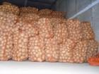 Смотреть foto Картофель Продам оптом картофель Гранада, Бэлла Росса 46340721 в Киеве