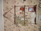 Увидеть фотографию Мебель для спальни деревянная полка Канатная дорожка 56905794 в Кинешме