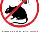 Изображение в   Гарантированное уничтожение клопов, тараканов в Климовске 2000