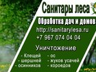 Фотография в Прочее,  разное Разное Служба Санитары леса специализируется на в Подольске 0