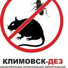 Эффективная борьба с клопами в Климовске Домодедово