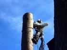 Увидеть foto  Спил деревьев, очистка участков, удаление любых деревьев 36979426 в Королеве