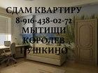 Свежее изображение Аренда жилья сниму 1-2 ком, кв-ру г, Мытищи, Королев, Юбилейный 37214381 в Королеве