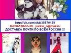 Фотки и картинки Сибирский хаски смотреть в Котласе