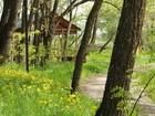 Просмотреть фото  Рыбалка на синца в Краснодарском крае и отдых летом 36877745 в Краснодаре