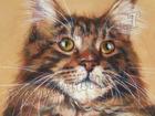 Уникальное фото  Портрет Вашего домашнего Животного 37713209 в Краснодаре