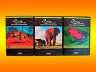 Новое изображение  видеофильмы редкие об удивительных животных 38742450 в Краснодаре