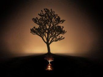 Просмотреть фотографию Светильники, люстры, лампы Проекционный светильник Магнолия 32324363 в Краснодаре