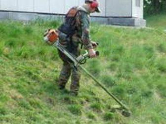 Скачать бесплатно foto Резюме Предложение: Покос Травы! в Краснодаре 32558461 в Краснодаре