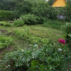 Продаётся земельный участок в п, Архангельское